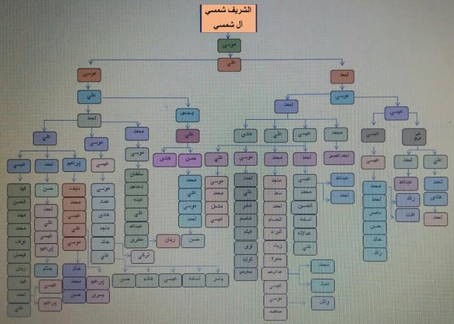 Shamsi Tree